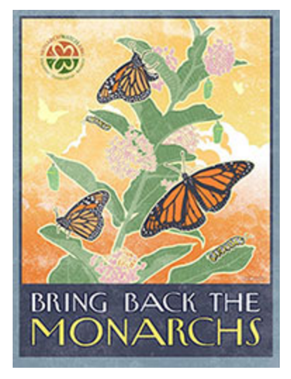 Photo credit: Monarch Watch www.monarchwatch.org