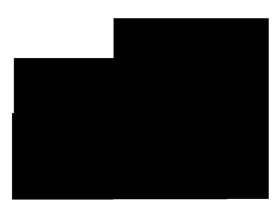 SFDFF logo