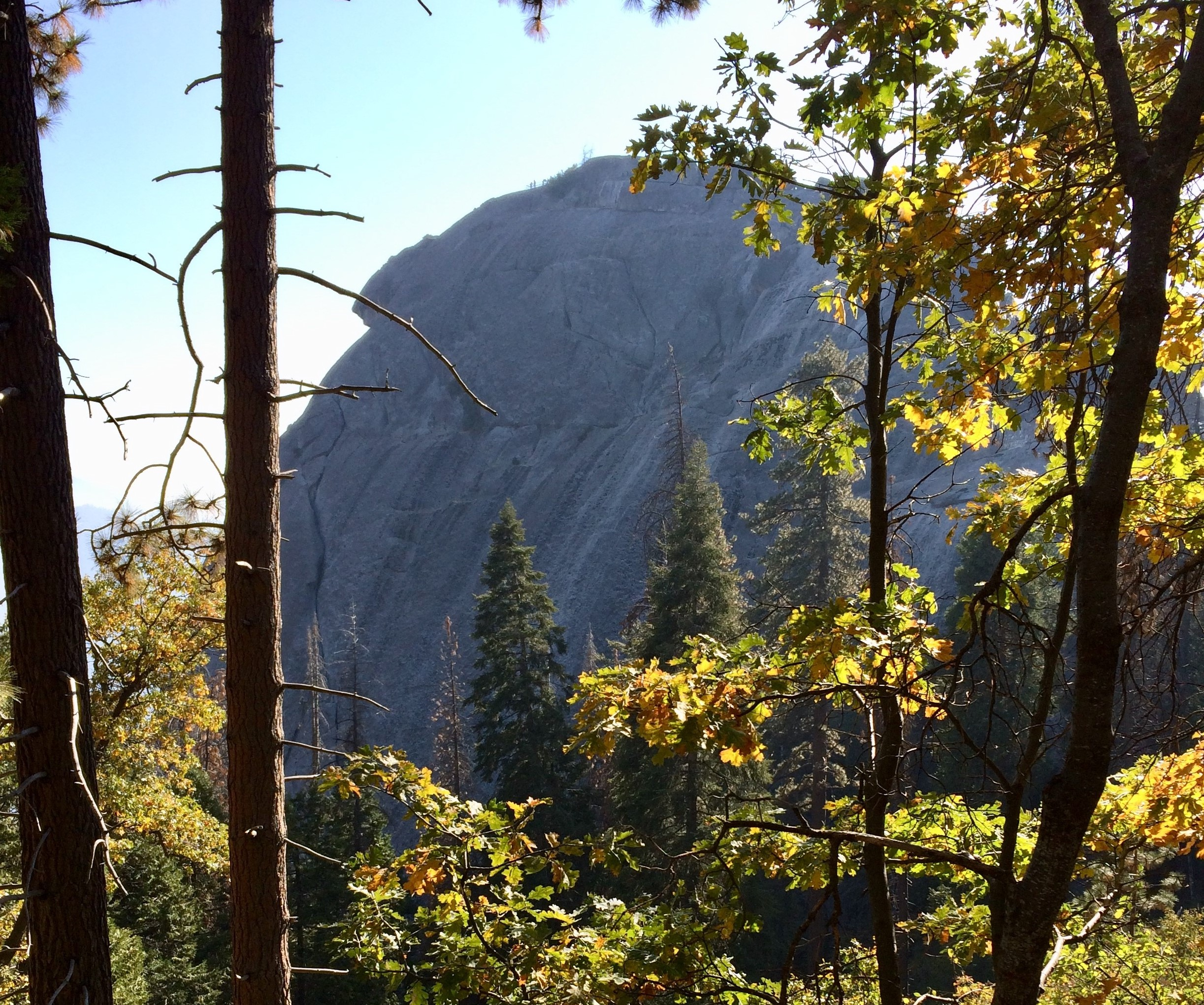 Moro Rock, Three Leaves, CA - I made it all the way to the top!