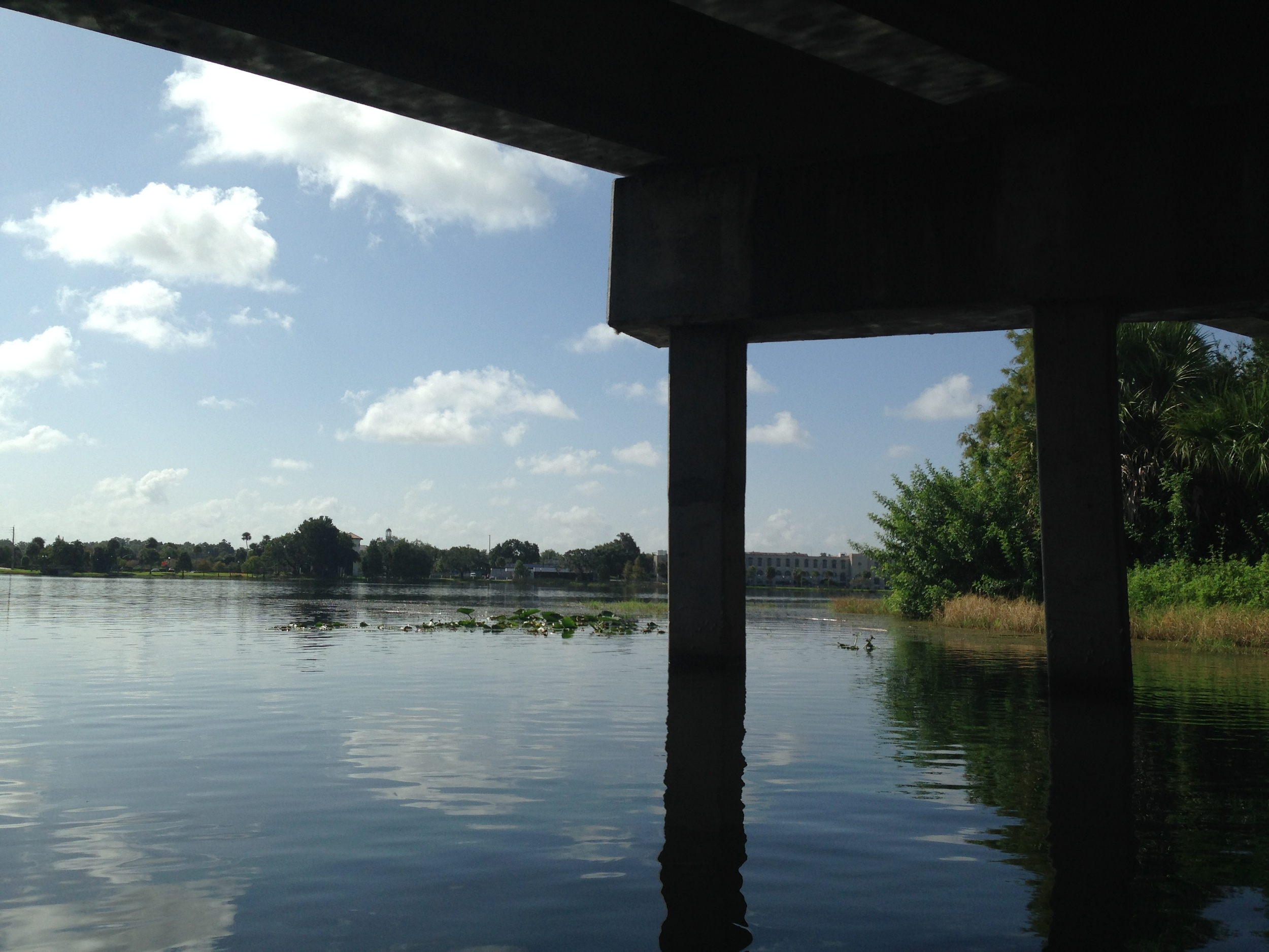 A fishing pier underneath I-4 linked by a walking path would be amazing.