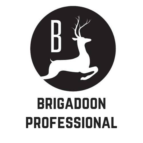 Brigadoon Professional 1.png