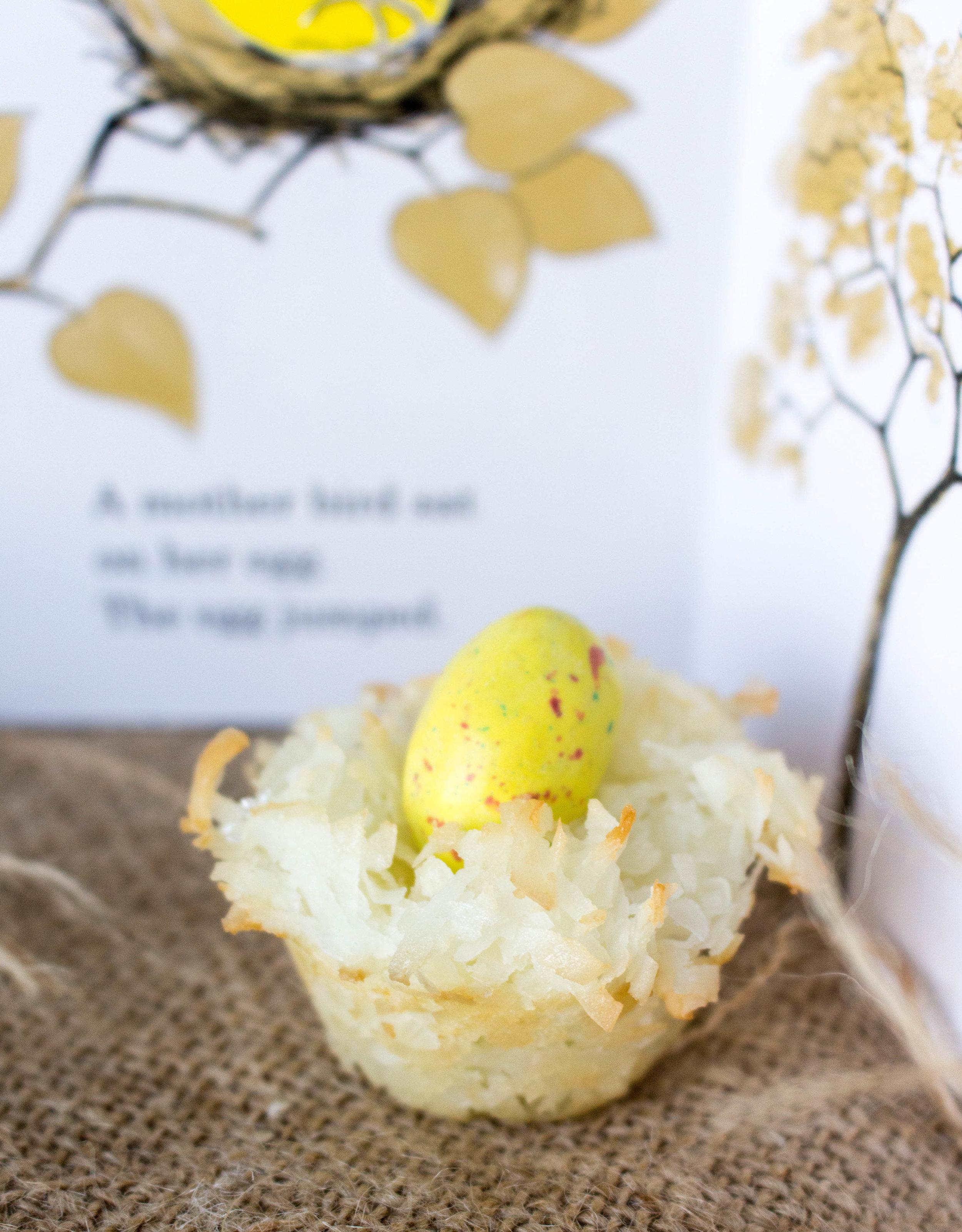 egg nest.jpg