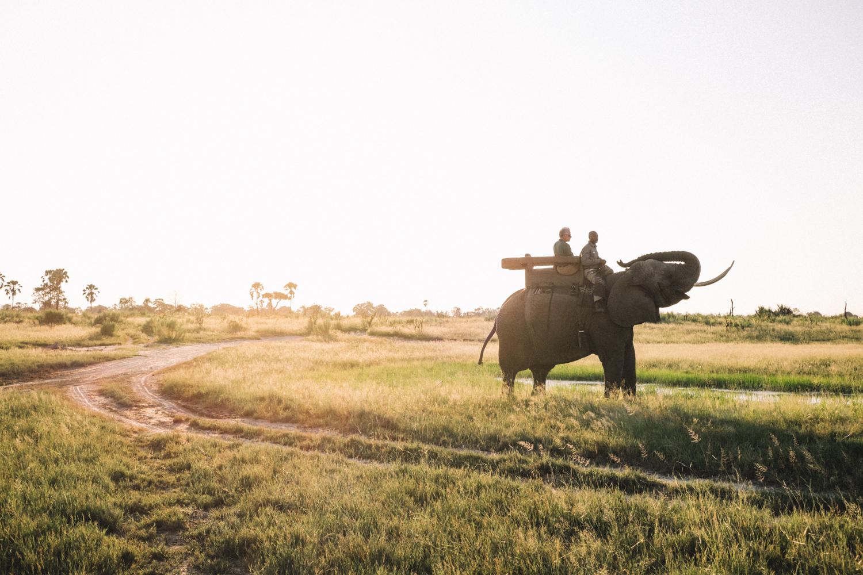 melissademata.com | Abu Camp Okavango Delta Botswana - Elephant Ride