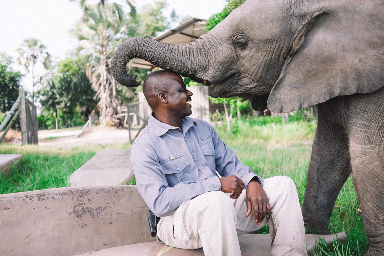 Melissa de Mata | Abu Camp Luxury Safari - Botswana