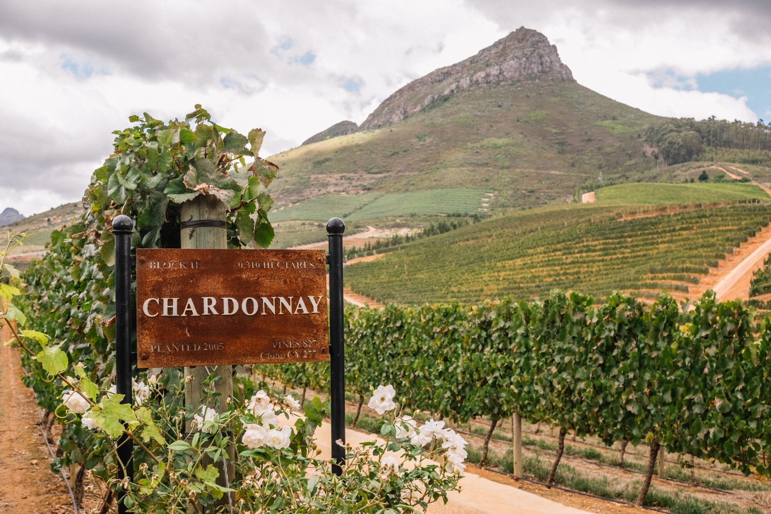 Delaire Graff Estate | Stellenbosch, South Africa