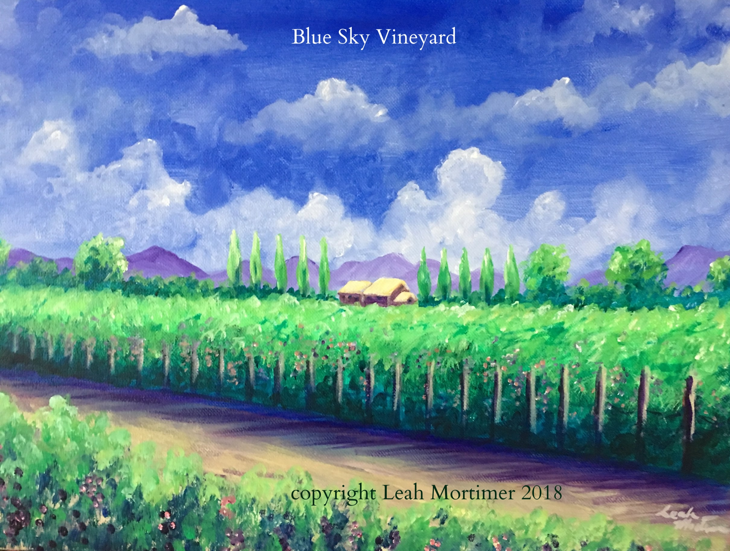 blue sky vineyard.JPG