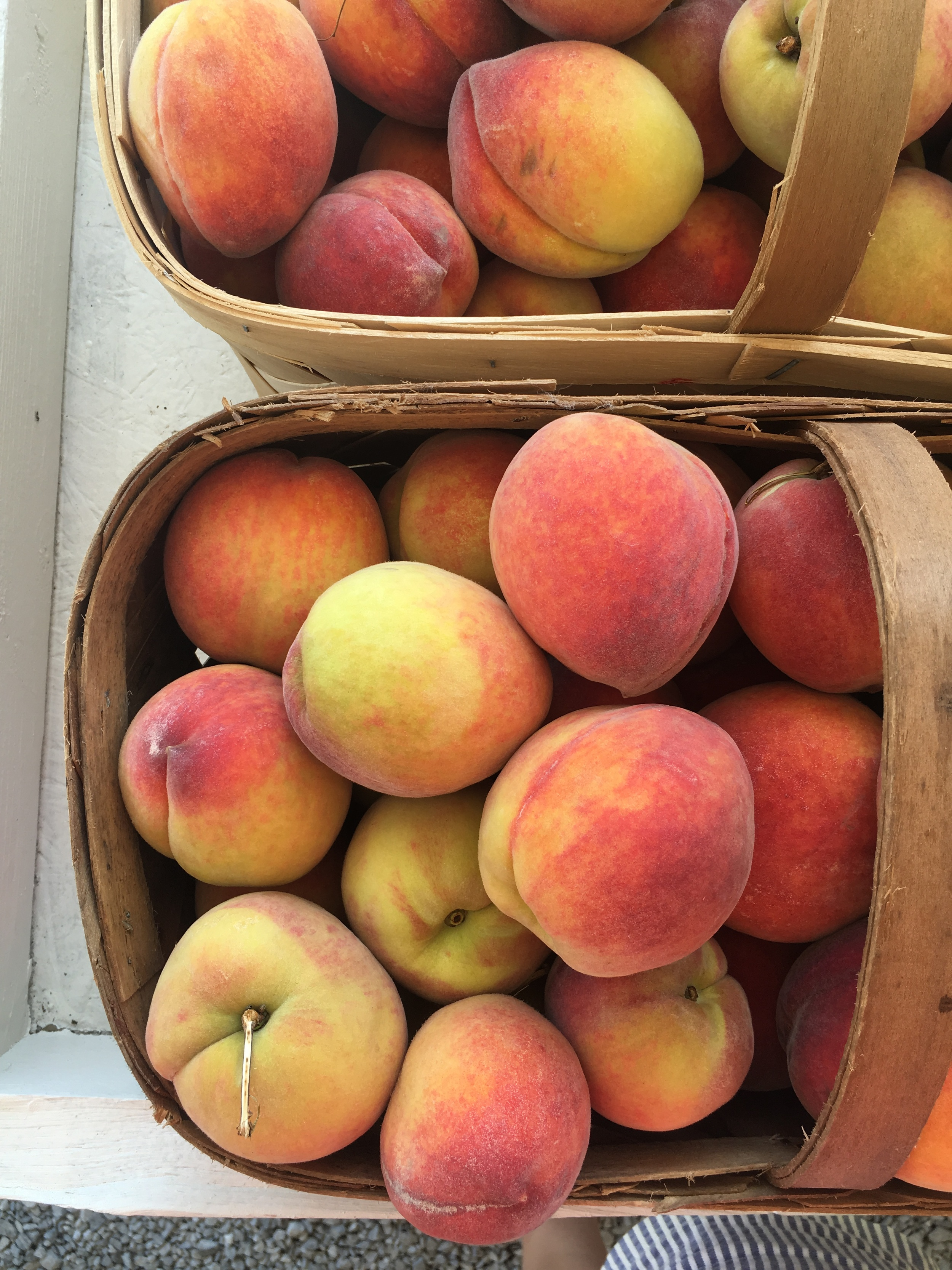 some peaches from the ever-so-cool farmstand in the 12 South neighborhood