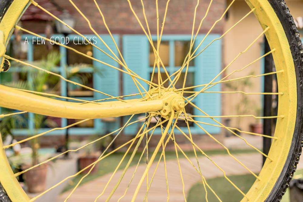 The-yellow-tyre-nibs-cafe-jaipur-a-few-good-clicks