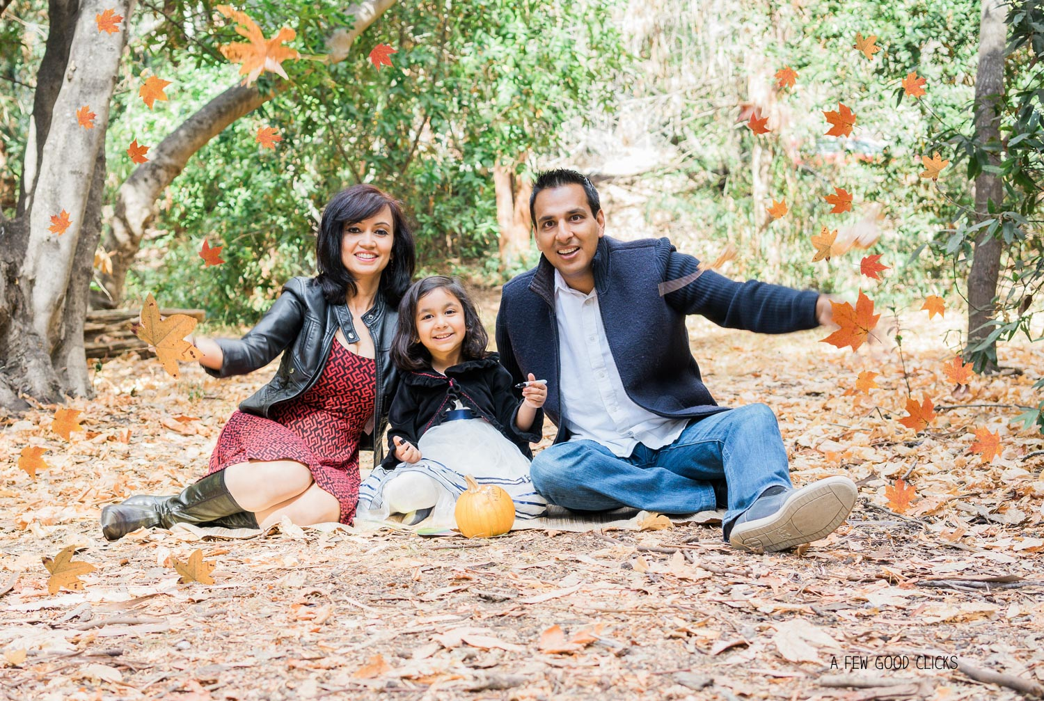 leaves-prop-family-photography-twin-pine-park-afewgoodclicks-net
