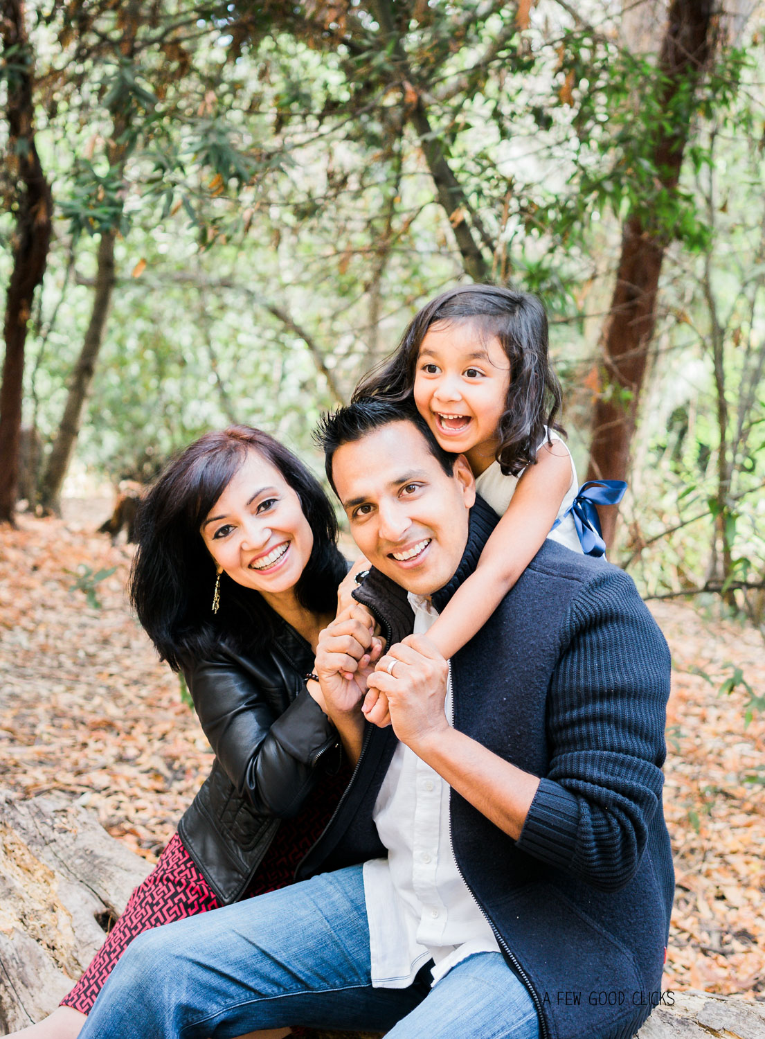 ideas-inspirations-fall-family-photography-by-a-few-good-clicks-net