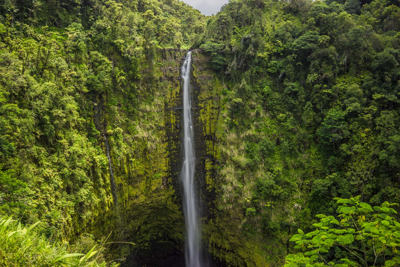 akaka-falls-bigisland-hawaii-landscape-photography-by-afewgoodclicks-net.jpg
