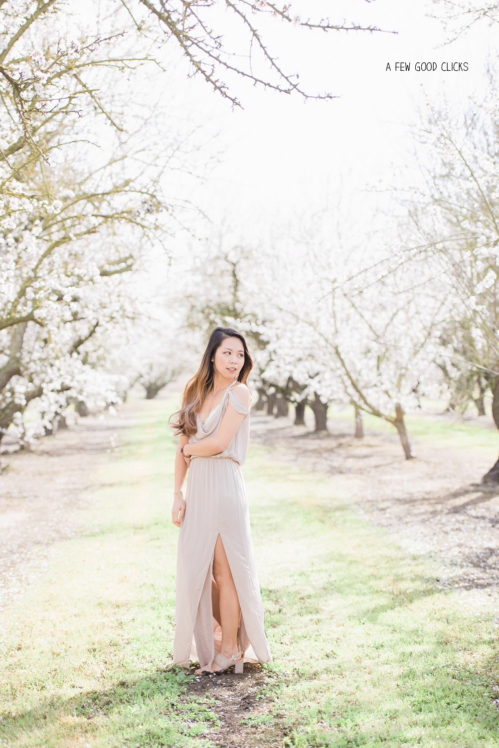 High fashion solo portrait at Almond orchards near Hughson, CA