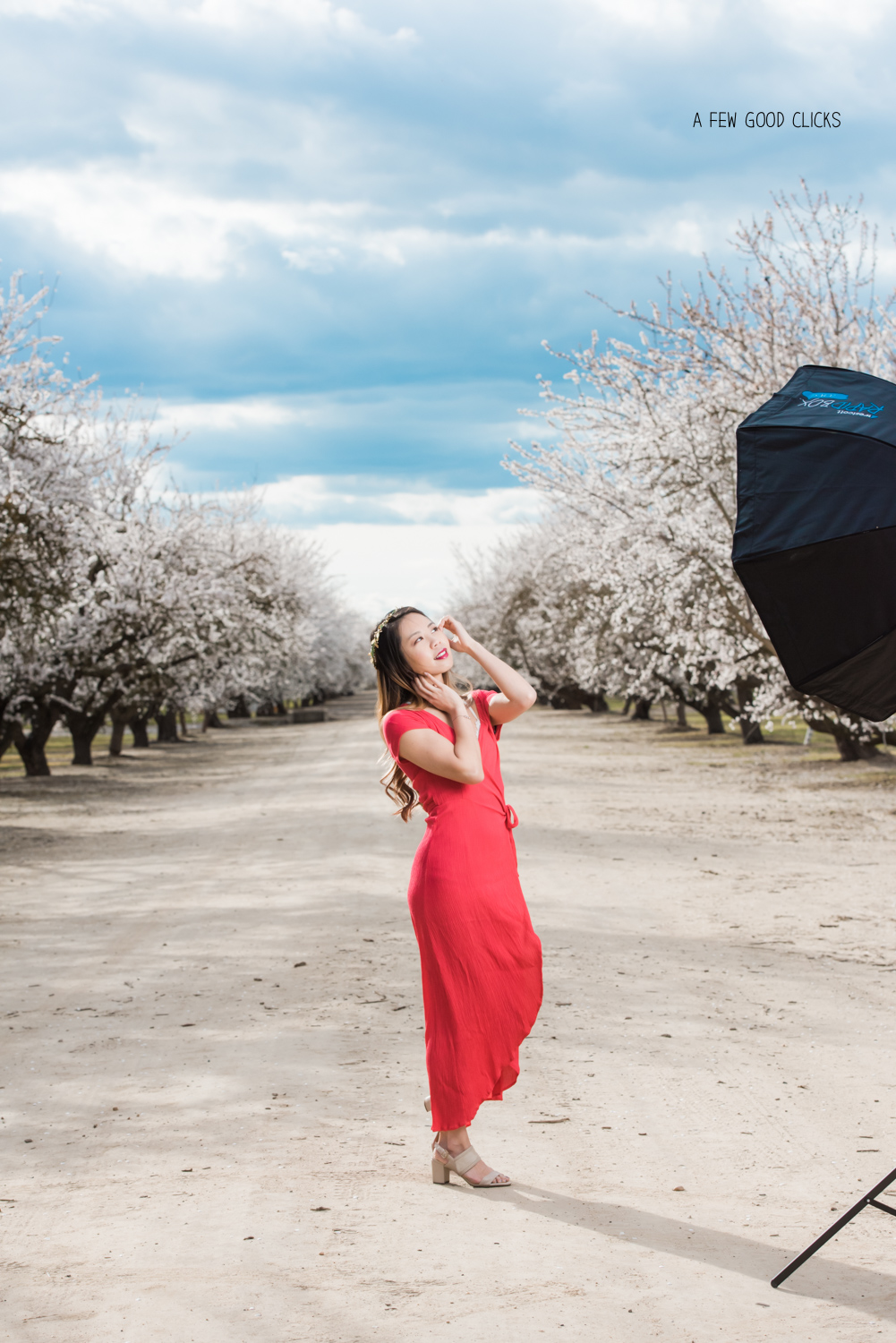 almond-orchard-portrait-using-softbox