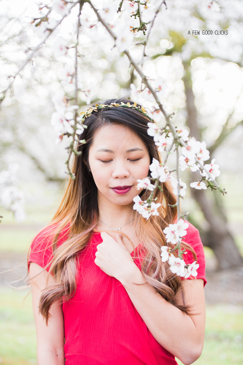 almond-blossom-lifestyle-portrait-photography-by-afewgoodclicks-net-122.jpg