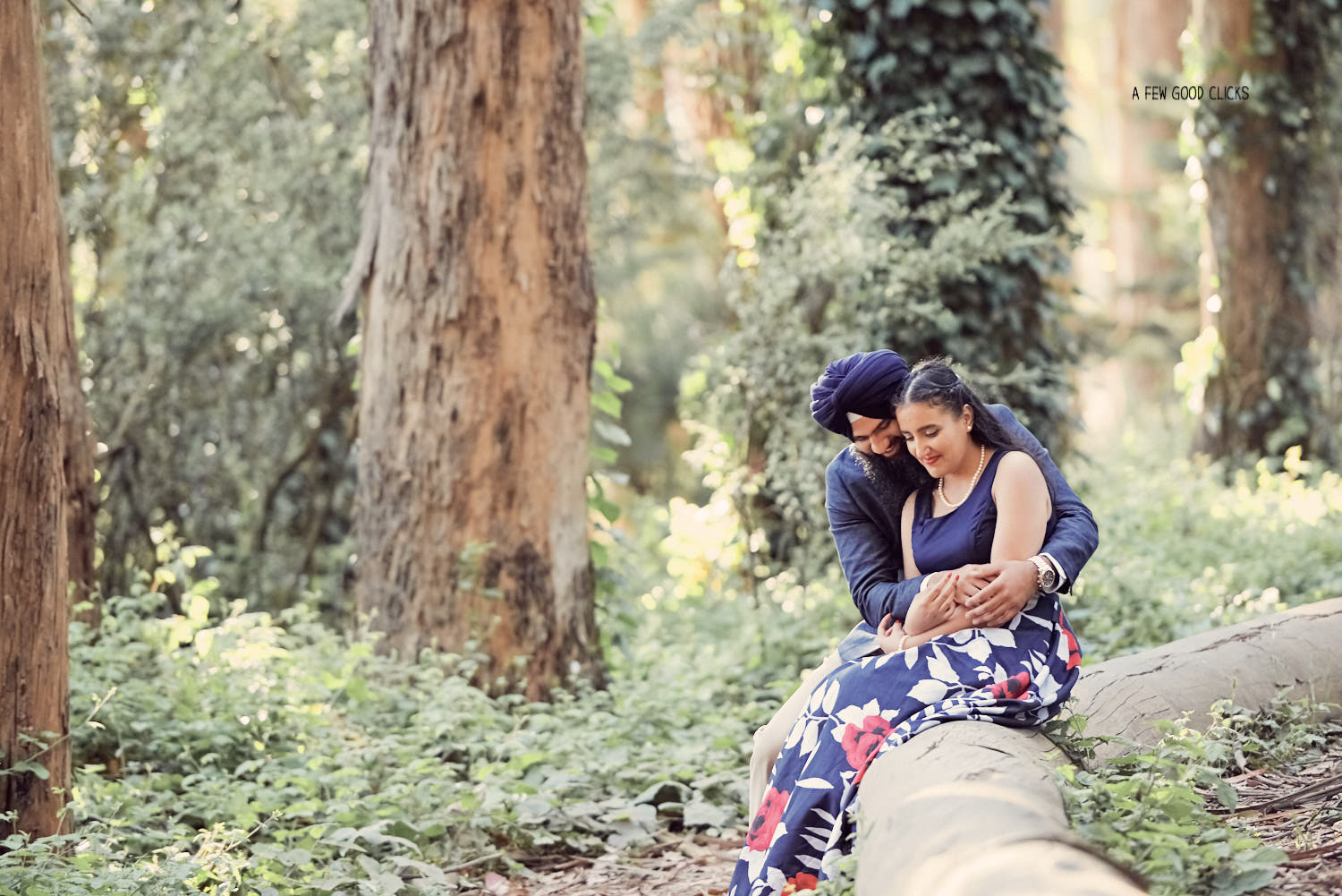 Beautiful Indian American Couple Portraits at