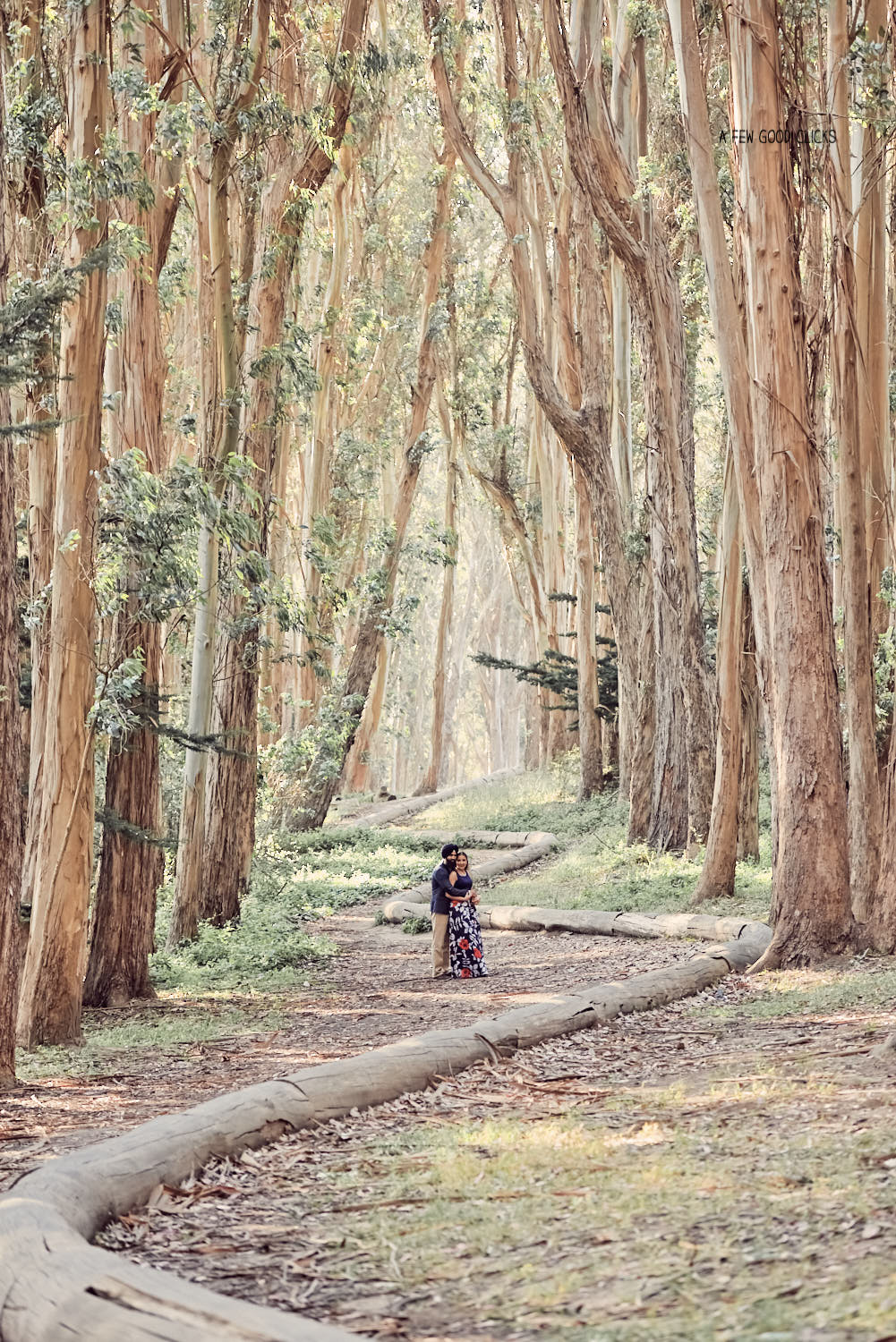 Lover's Lane in Presidio is kind of a hidden gem but offers a perfect location for your casual style photo shoot.