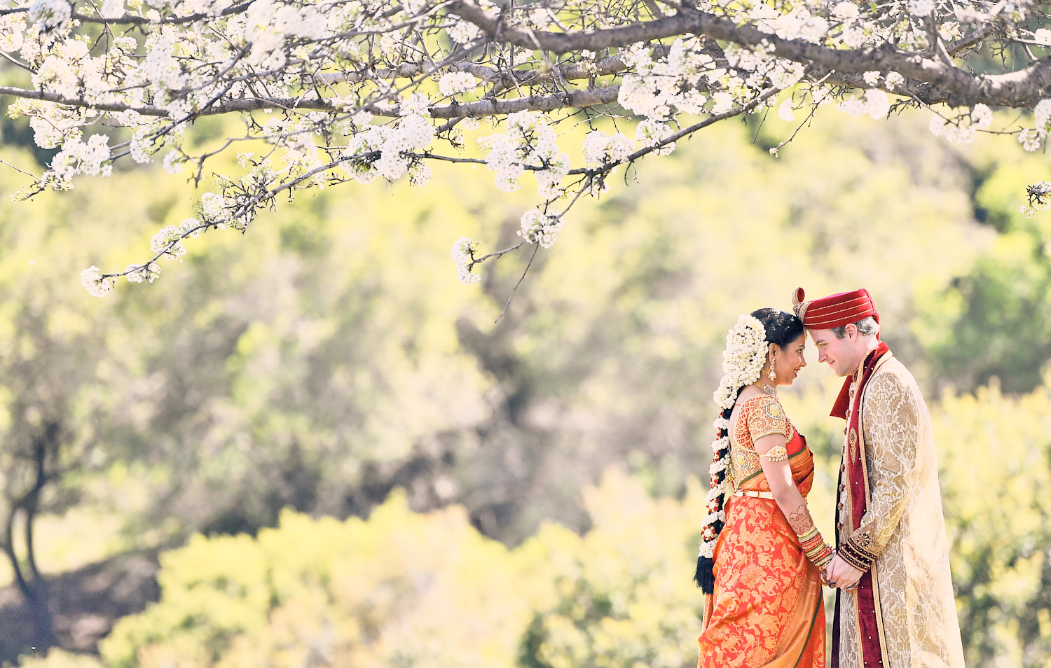 South Indian Bride & American Groom Photography in Saratoga.