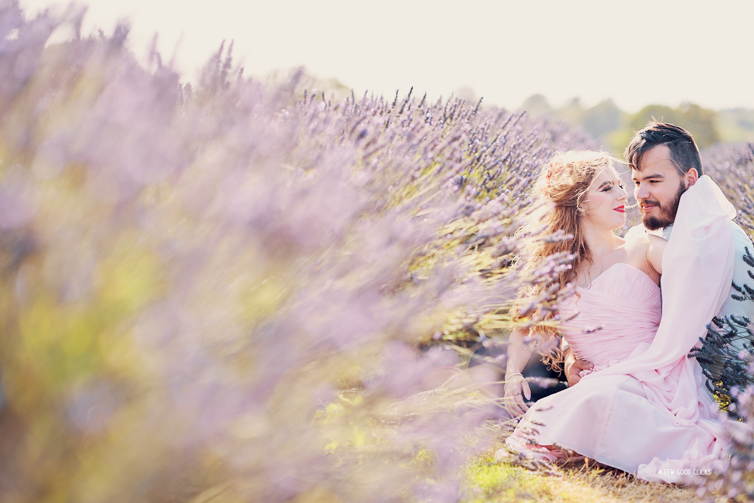 best-location-for-couples-photoshoot-around-the-world-lavender-fields