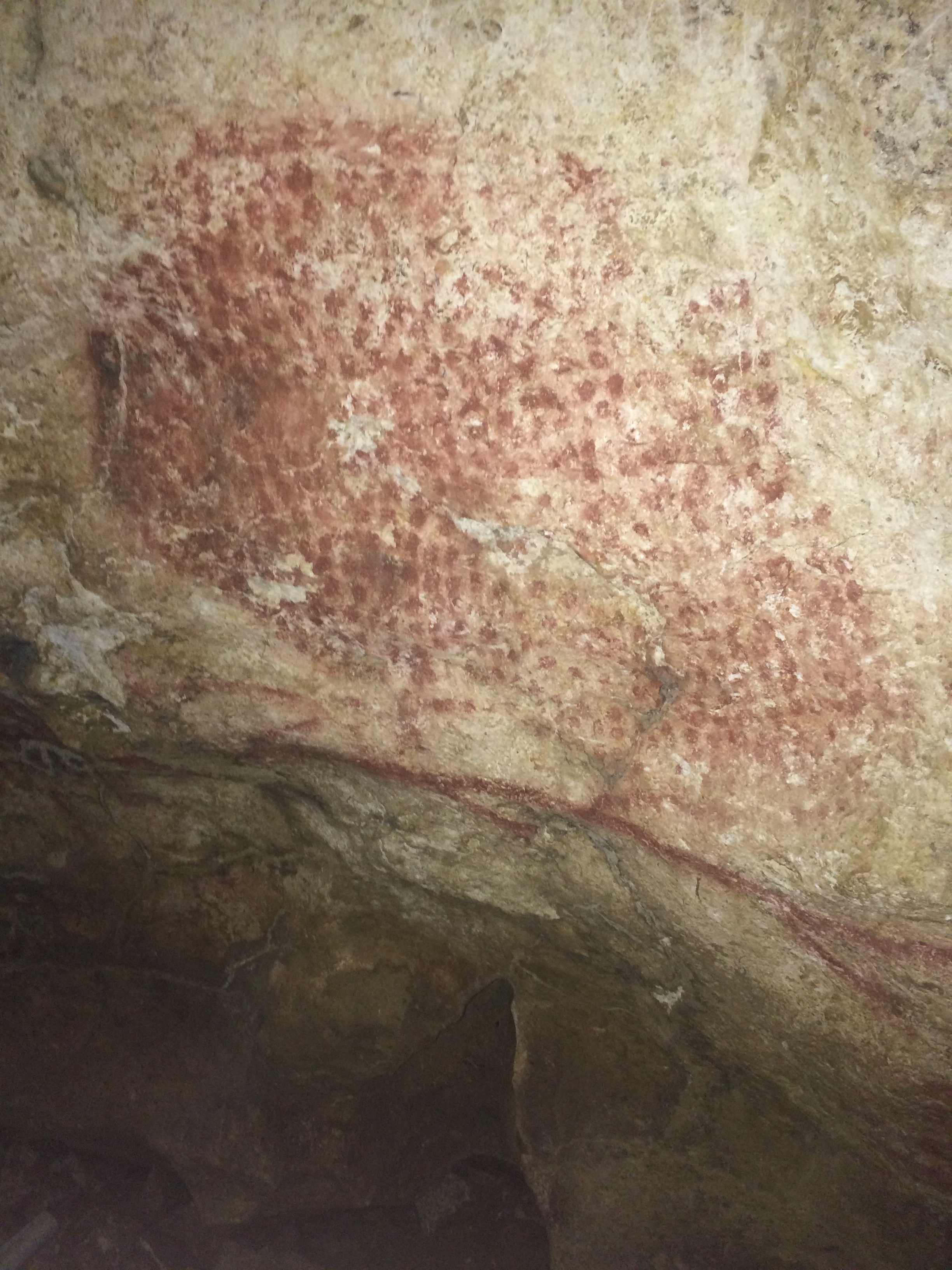 An example of cave painting in the interior of Marsoulas cave