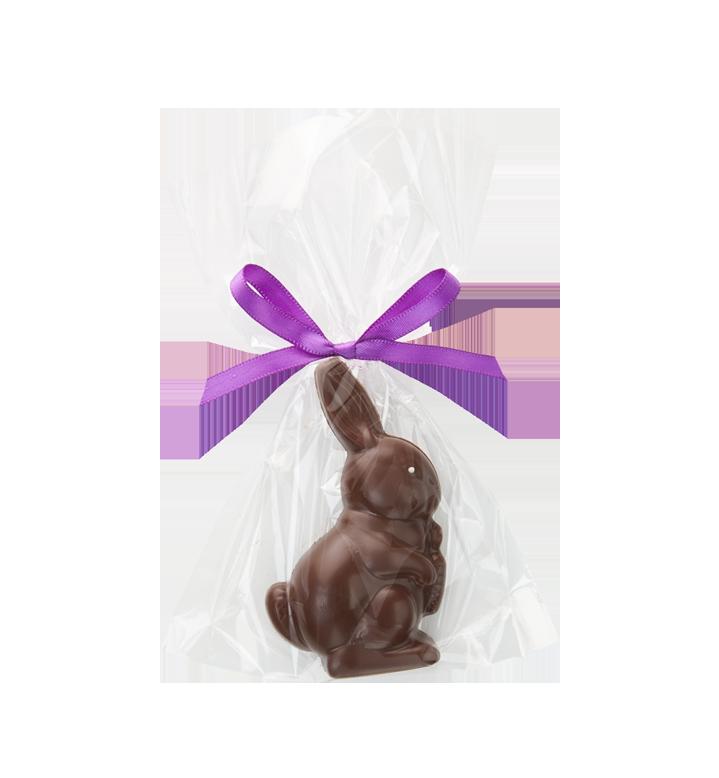 Dark Chocolate Raised Tablet Bunny