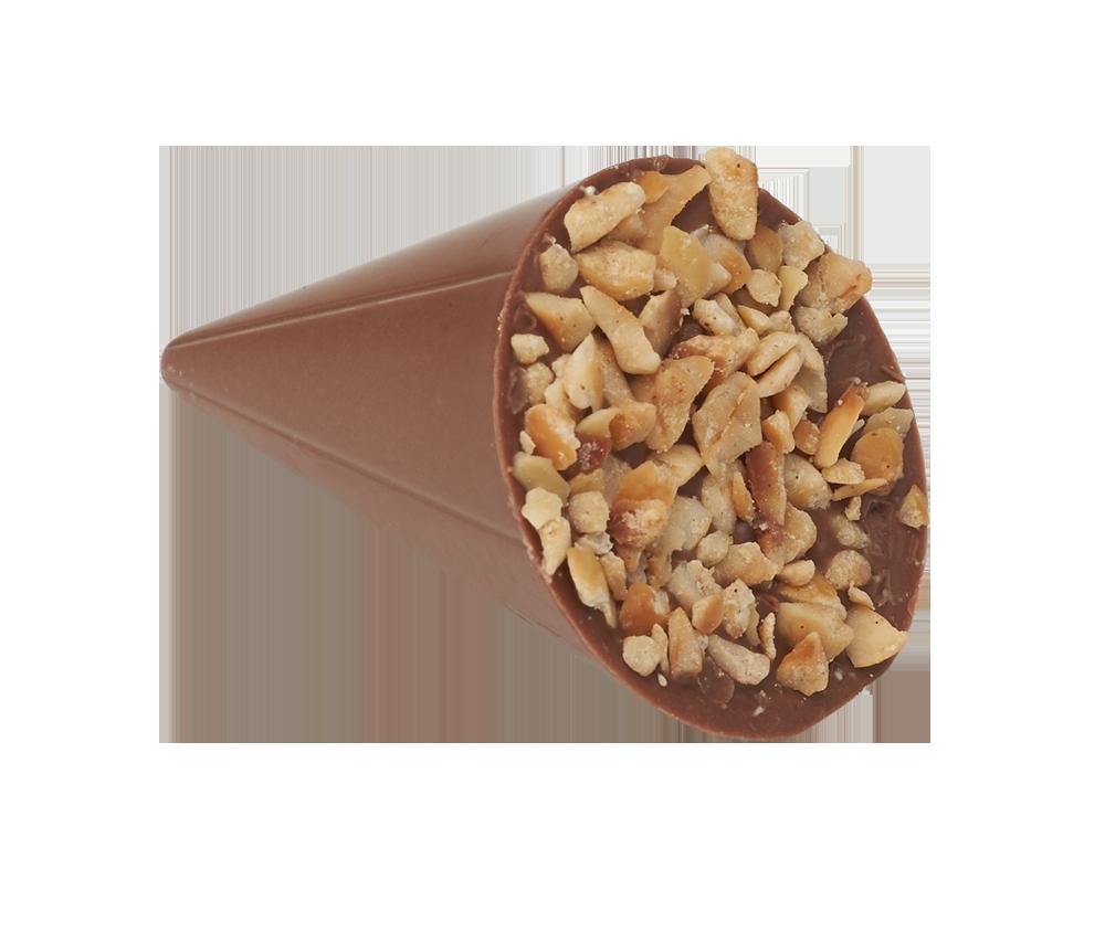 Hazelnut Cone
