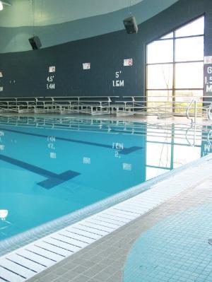 pool-500x666.jpg