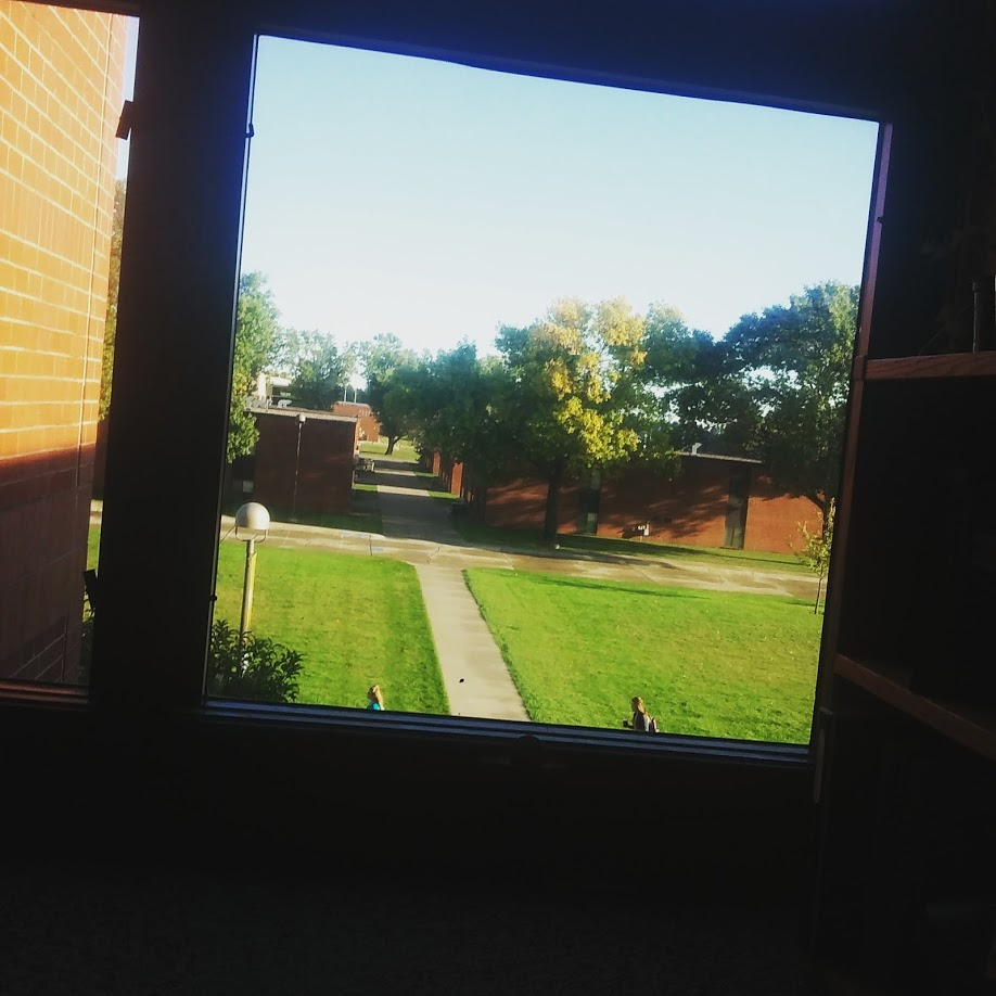 A shot of that window view I told you about; one that I enjoy pretty much every morning.