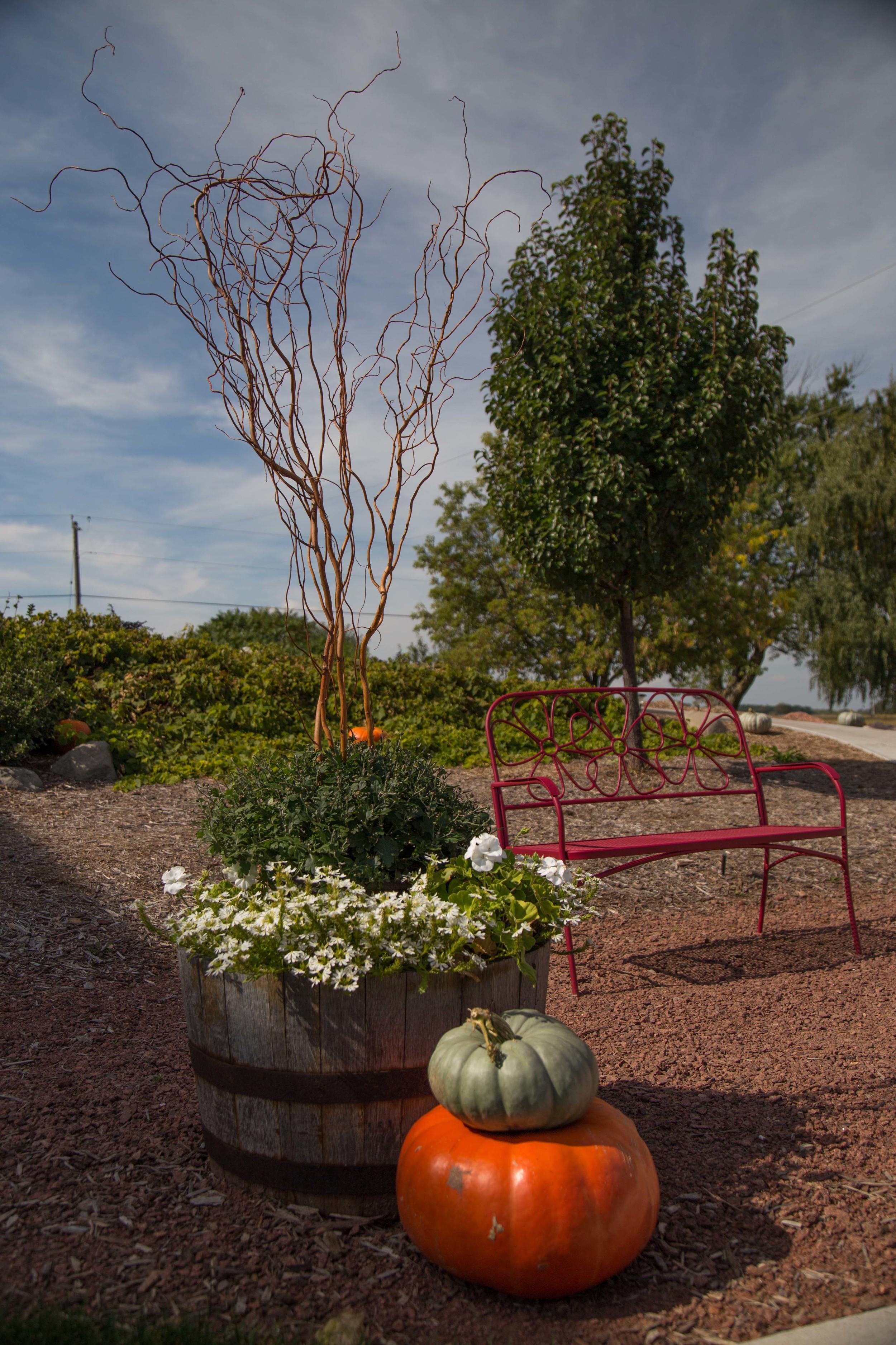 9_25-Courtyard_Barn_landscaping_8350.jpg