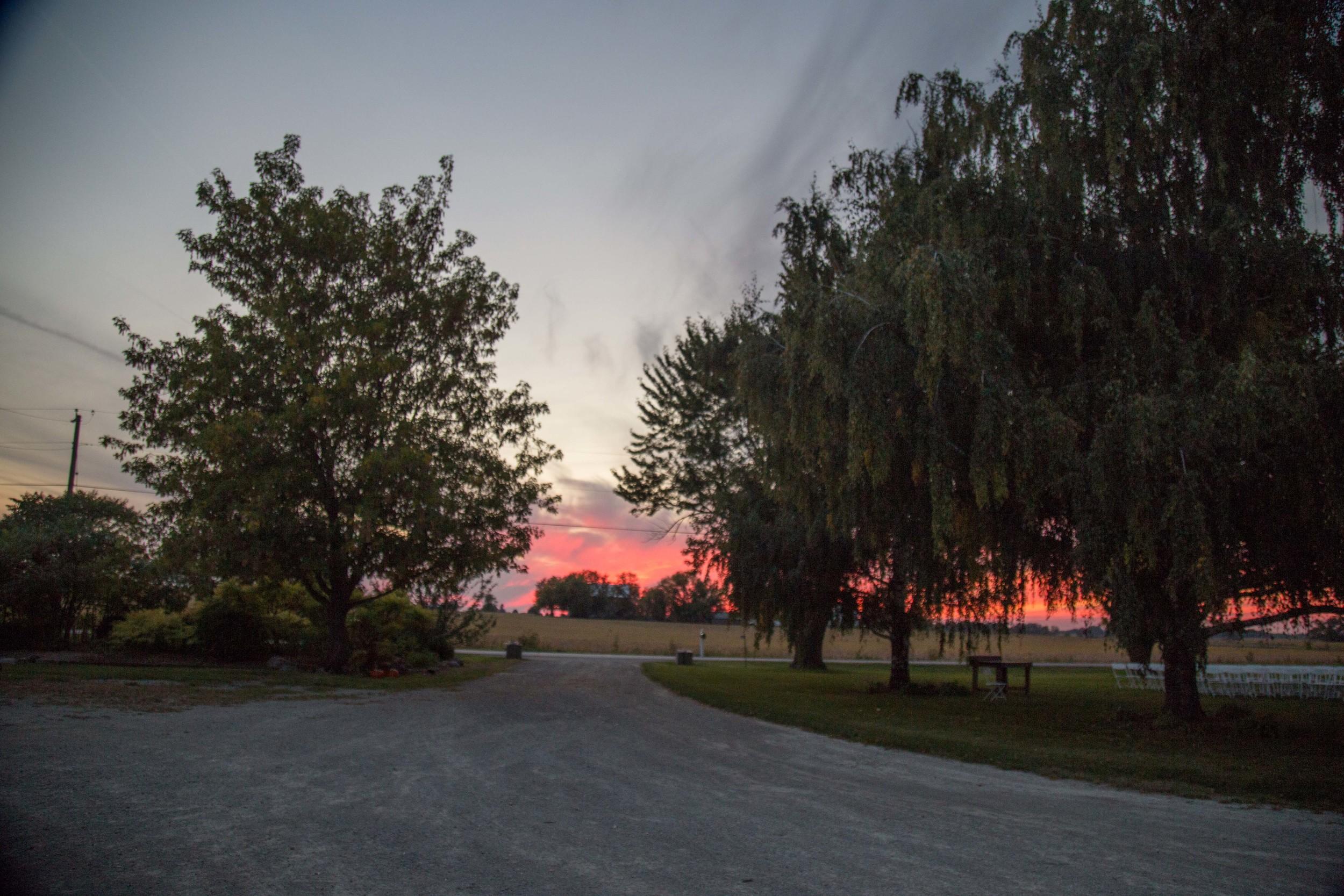 9_25-Birches_Driveway_Sunset_8467.jpg