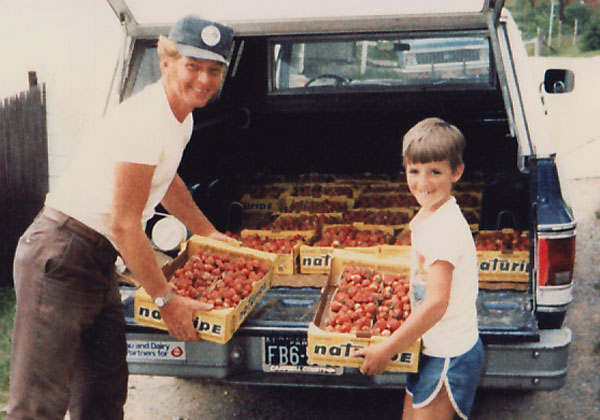Circa early 1980's, bringing a load of strawberries home from the field.