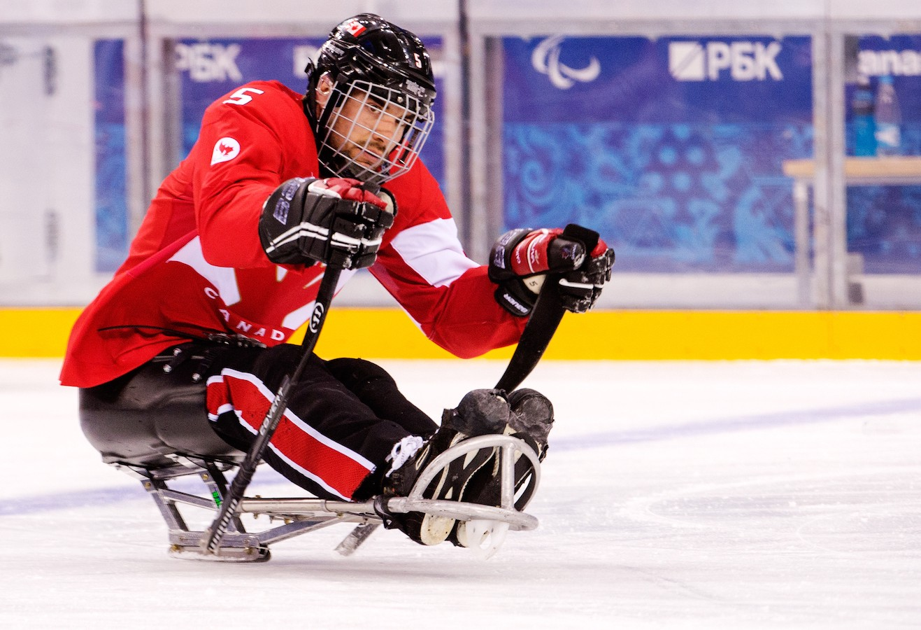 Playing in the 2014 Sochi Paralympics.