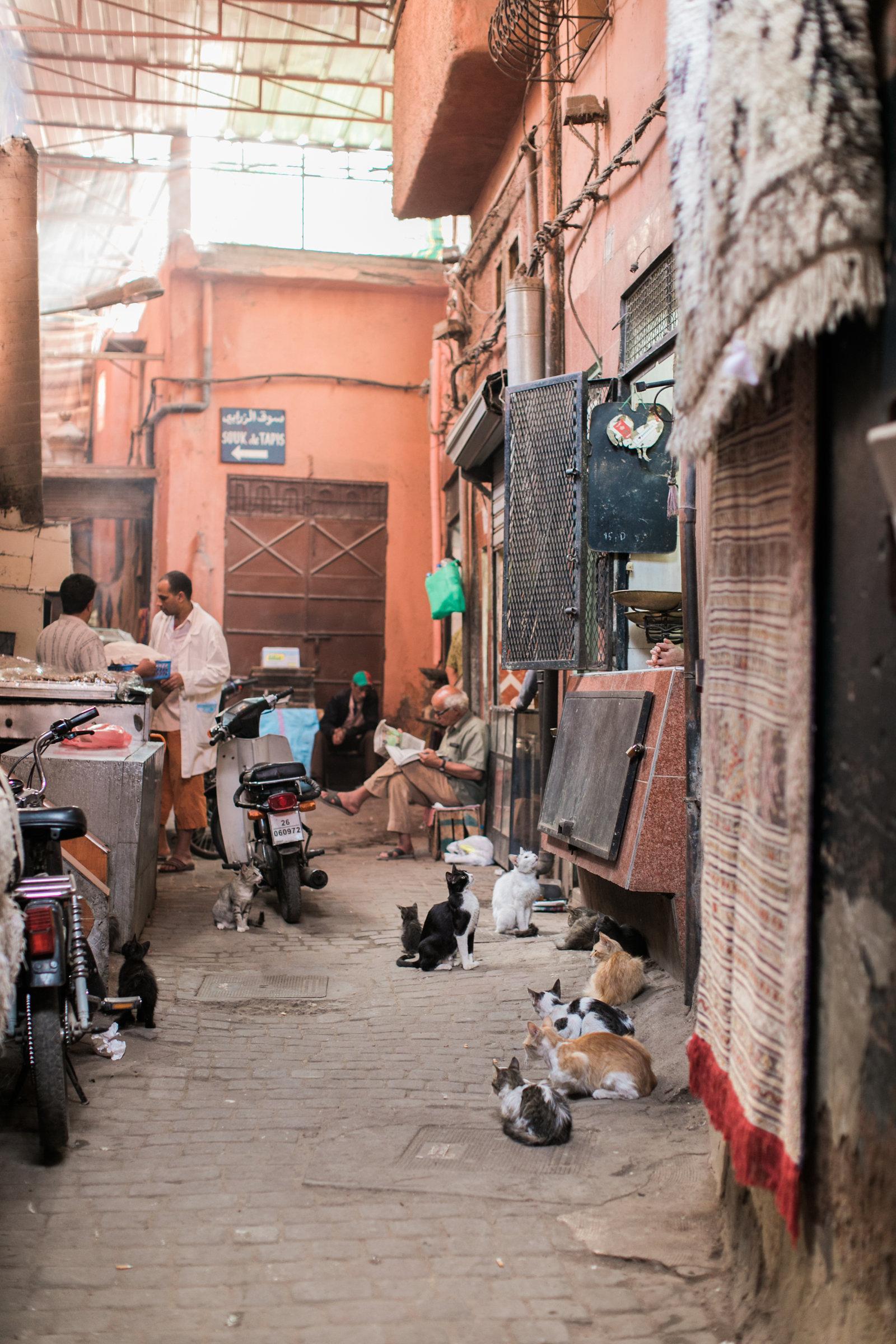 mariaraophotography_marrakech-35.JPG