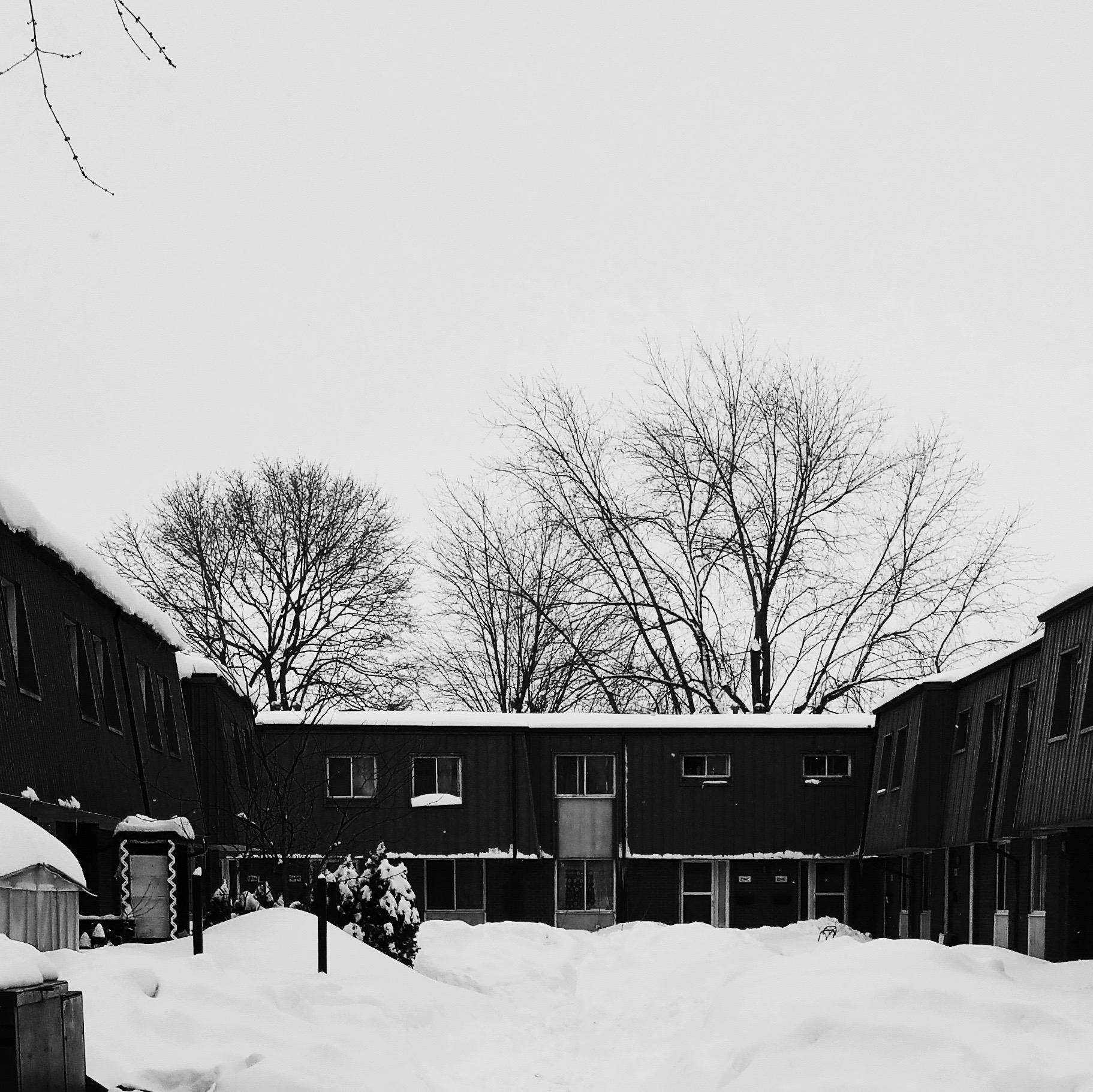 Row Houses 2017