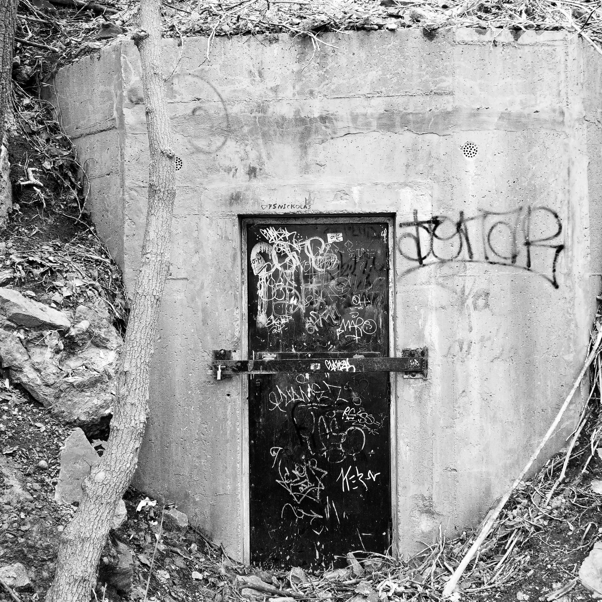 Graffiti Door 2017
