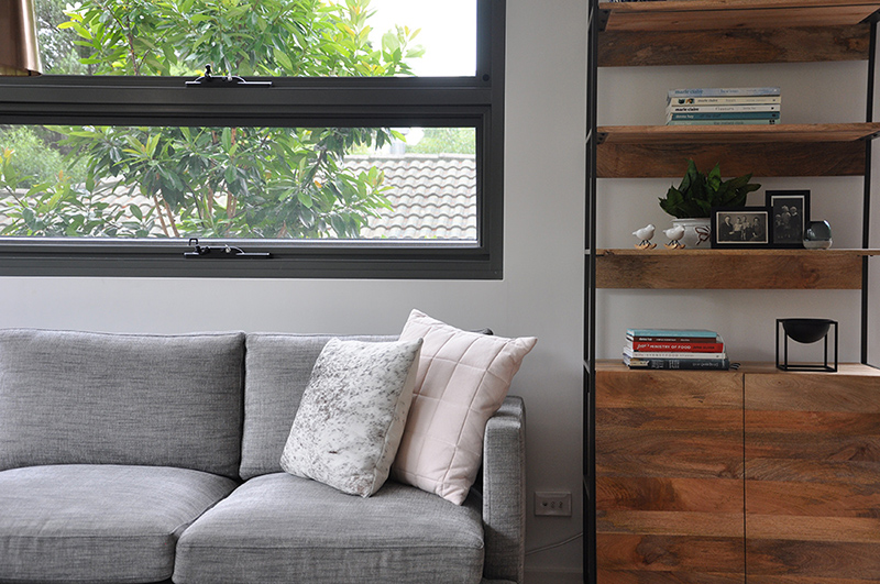 Bookcase and couch