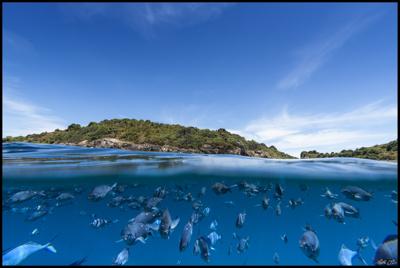 EarthSea&Sky.jpg