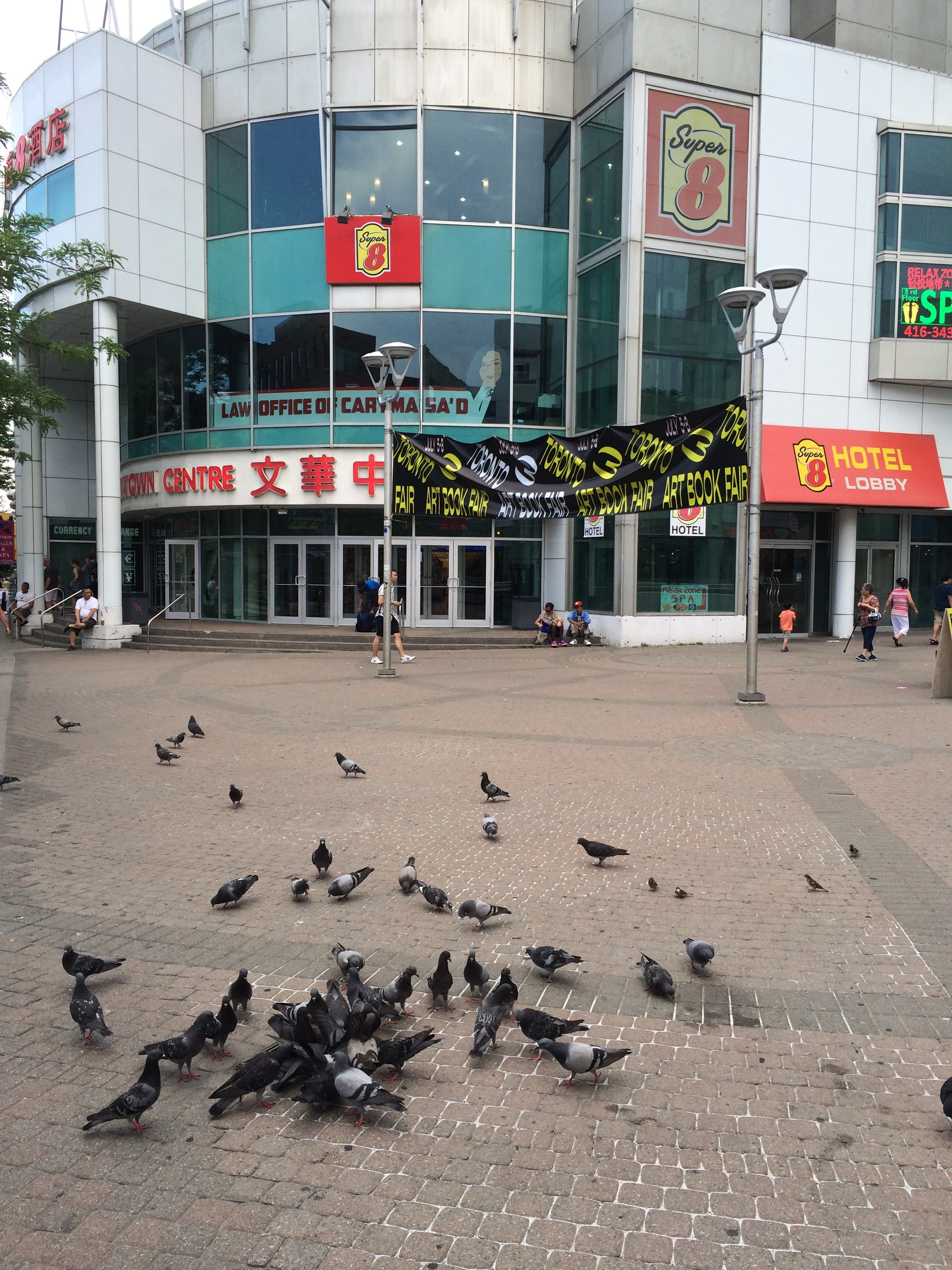 Chinatown Centre, Toronto Art Book Fair 2018 venue, is the gathering point of an important pigeon flock; pictured here are some of its members.