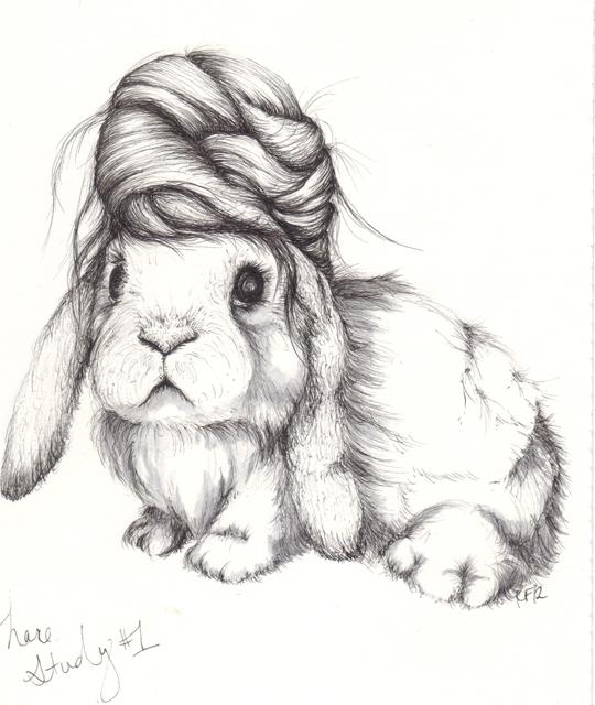 hare_study1_sm.jpg