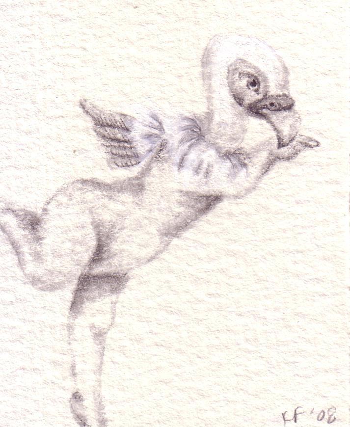 drawing37.jpg