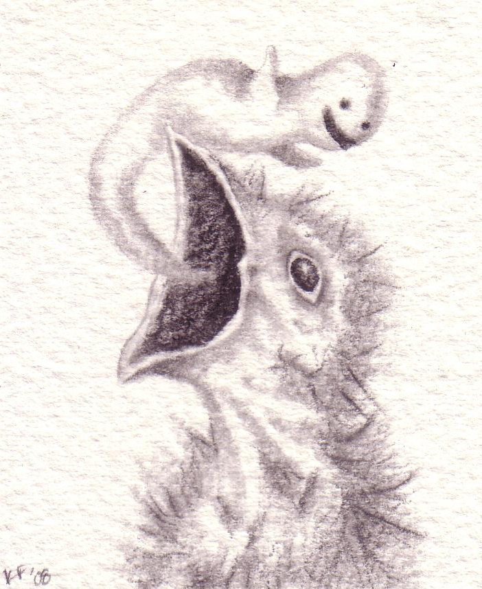drawing39.jpg