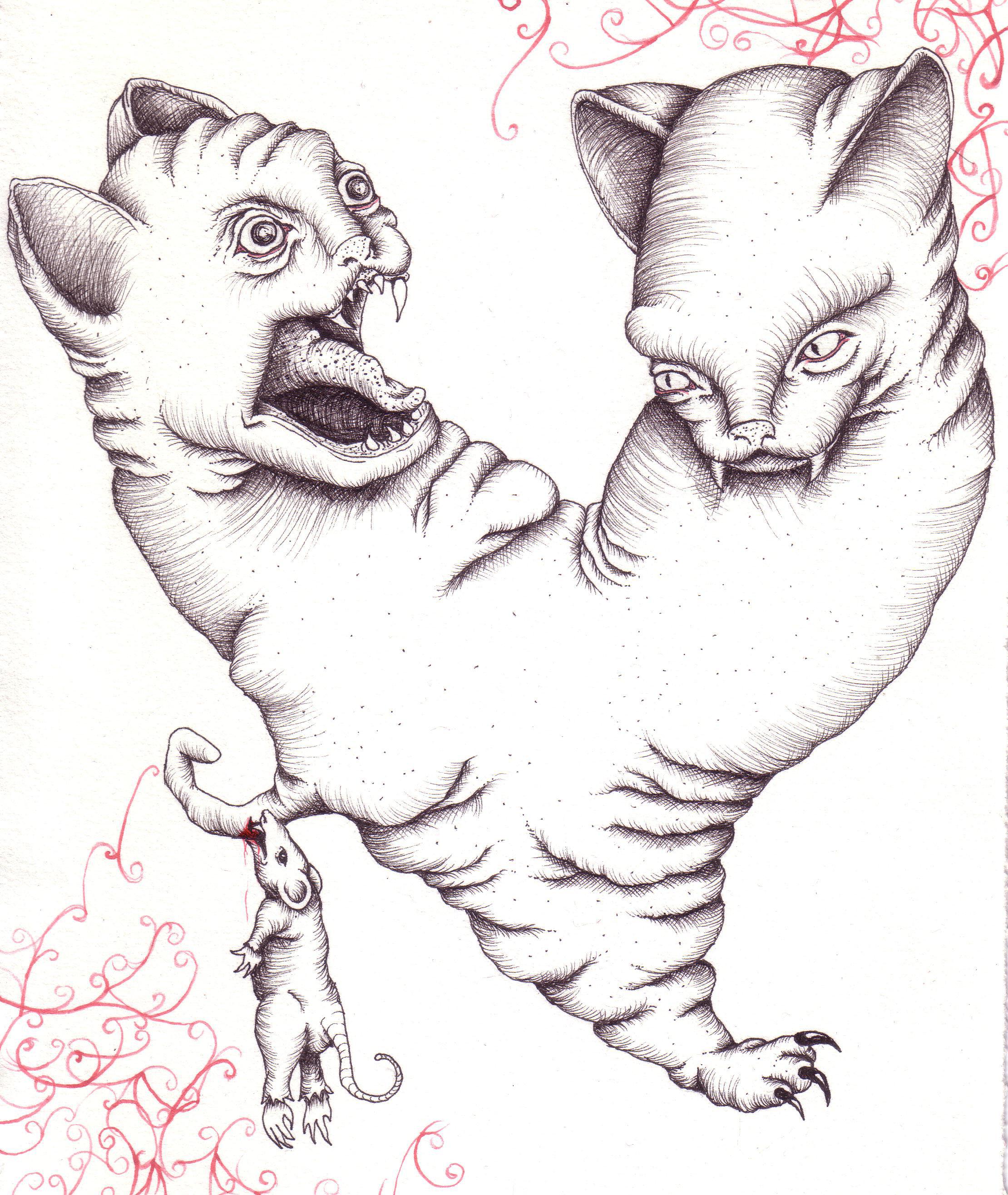 siamese_cats2.jpg