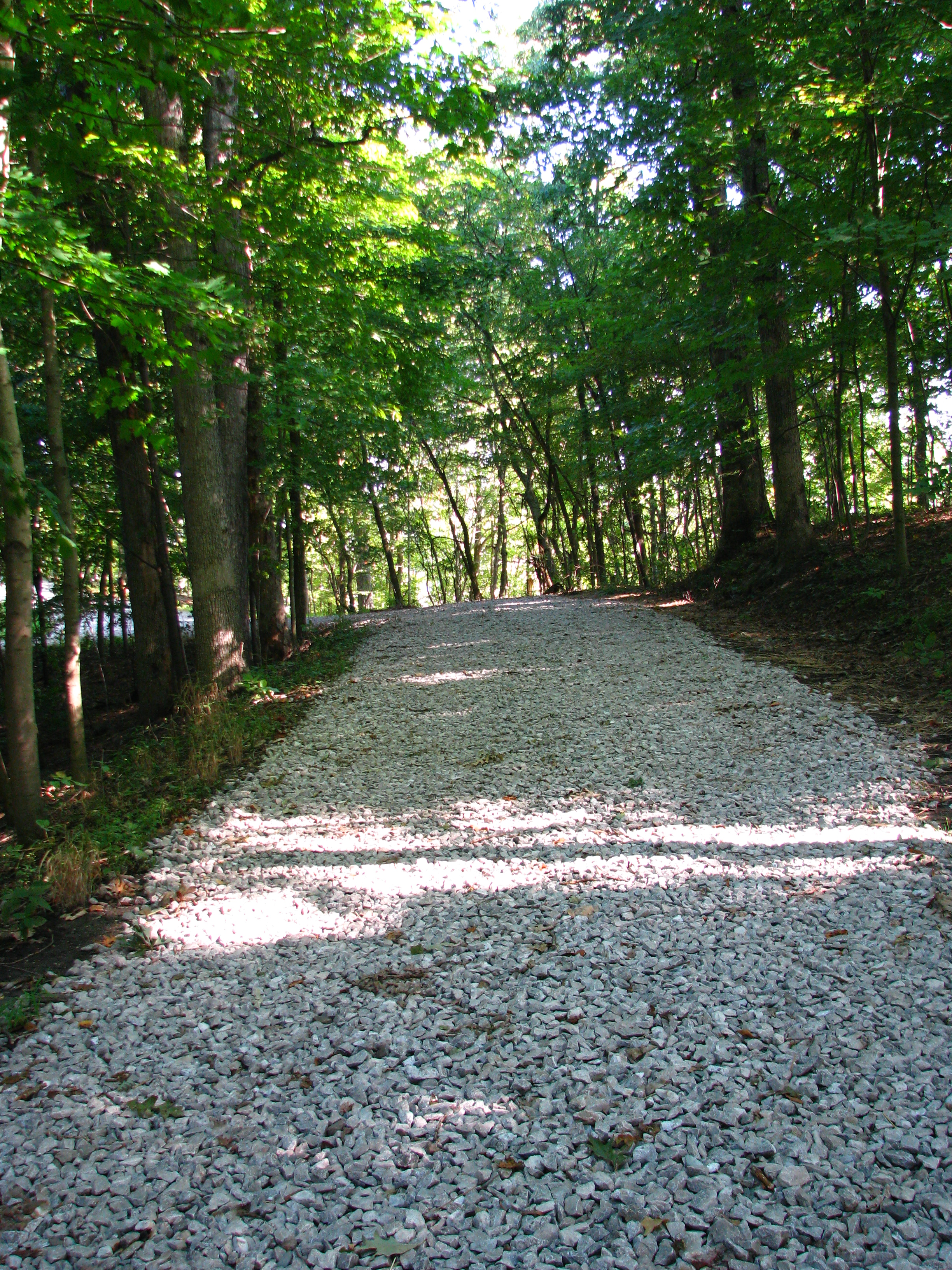 Trail along north end of property.