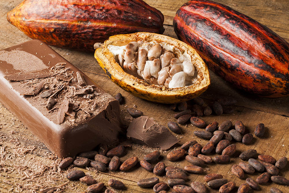 Cocoa & Spice Tours