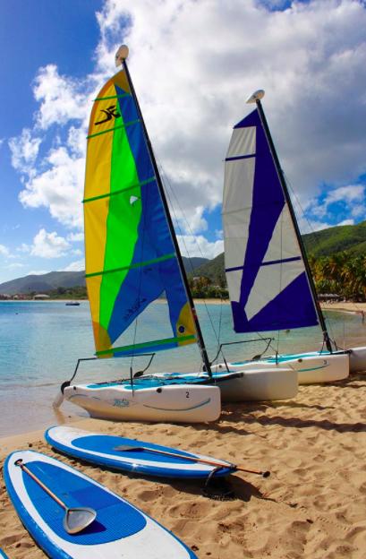 CB Sail-Paddle Vertical.png