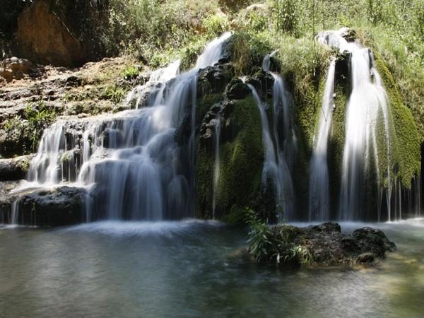 2. Nature 3567-ruta-de-banyeres-de-mariola-a-font-de-la-coveta.jpg