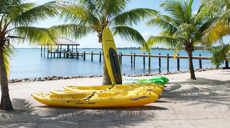 COMPLIMENTARY PADDLEBOARDS & KAYAKS