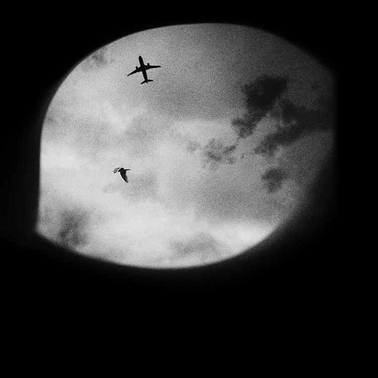 Gans_Sky View Fantasy (1).jpg