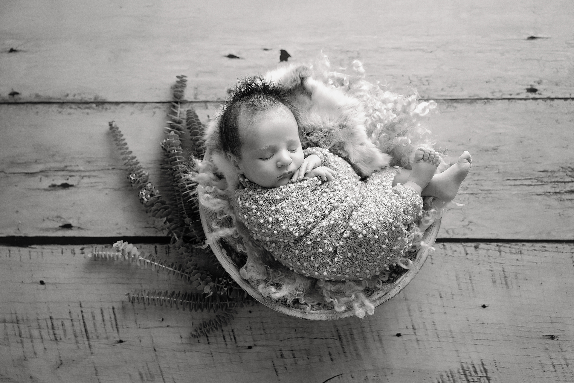 Arlo5weeks-19Black&White.jpg