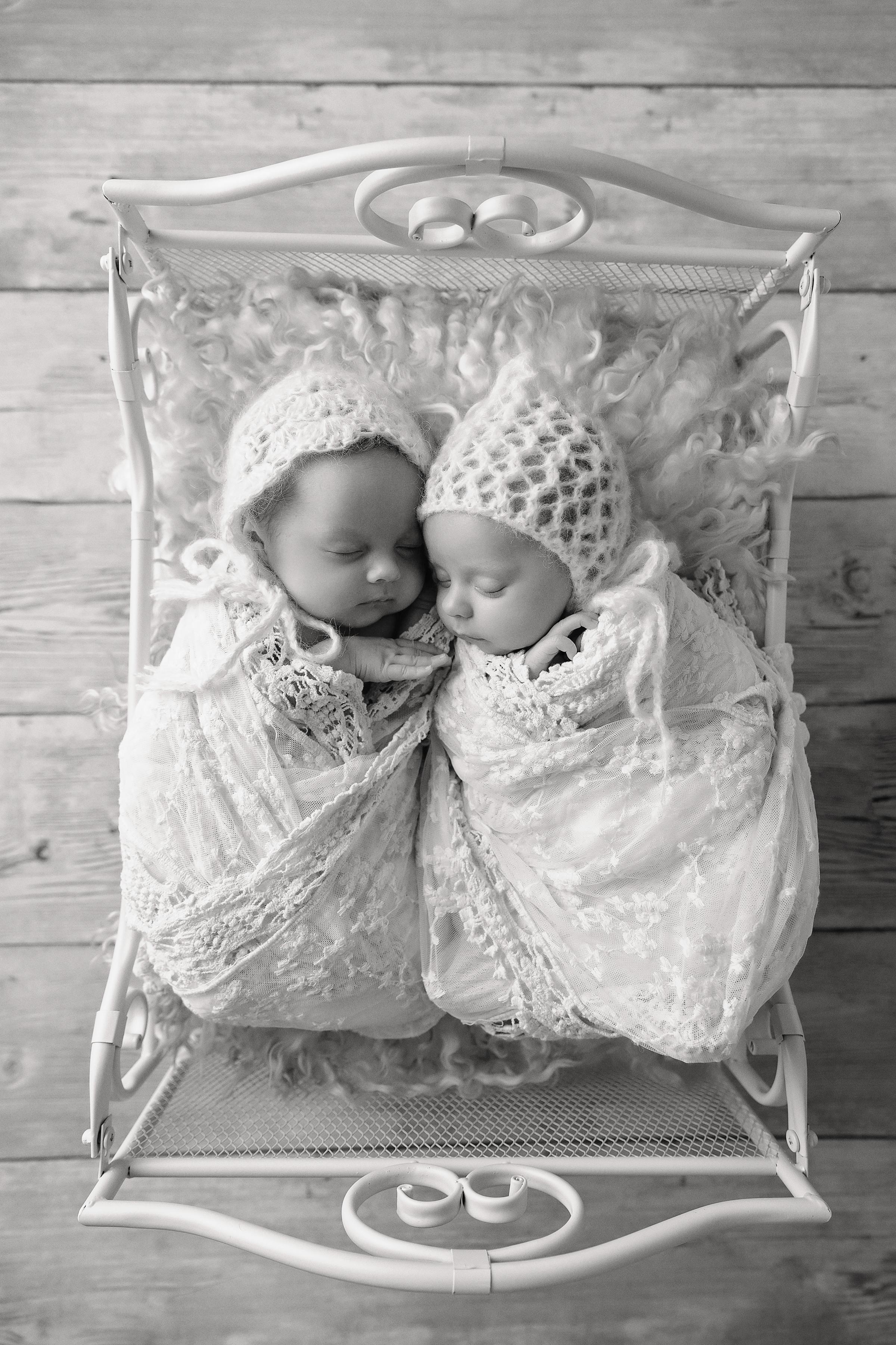 Evie&Frankie-25Black&White.jpg
