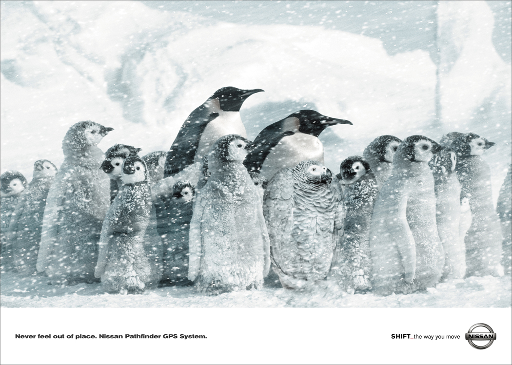 Pathfinder-Penguin.jpg